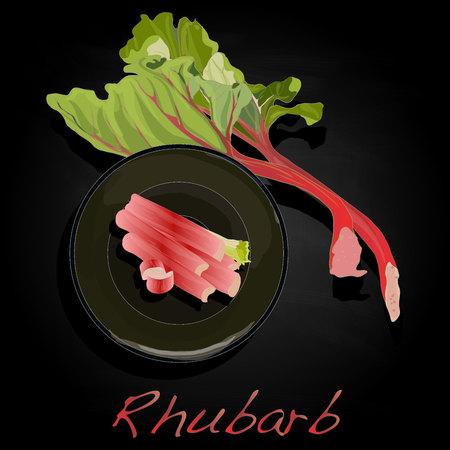 rhubarb: fresh rhubarb isolated on black vector