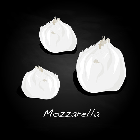 Piece of white mozzarella isolated. Illustration.