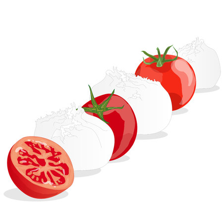 Piece of white mozzarella isolated. Illustration.