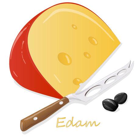 Edam cheese food collection illustration