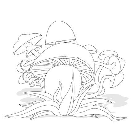 Mushrooms illustration set on white isolated on white Ilustracja