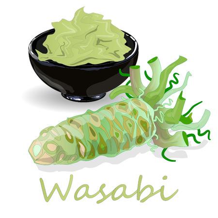 Wasabi Japanese horseradish in black cup illustration on white background.