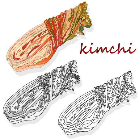 Kimchi, traditional korean food. Illustration on white.