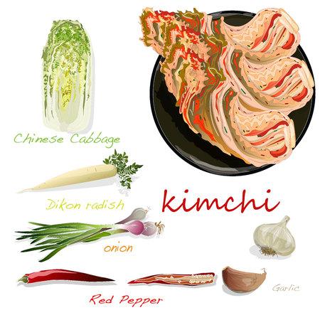 Kimchi, traditioneel Koreaans eten. Illustratie op wit. Ingrediënten voor kimchi. Vector Illustratie