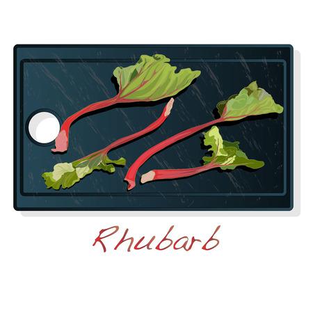 Fresh rhubarb. Rhubarb leavs on stone dish  isolated on white. Vector Illustration. Stock Illustratie