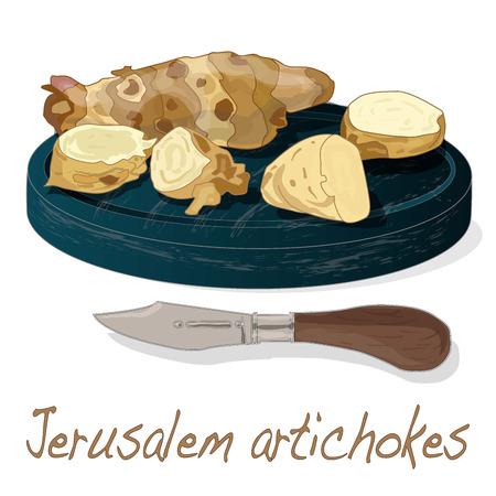 Topinambour. Jerusalem artichoke on plate vector illustration set. White background.