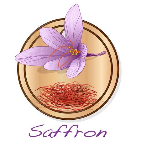 Saffron flower on the dish illustration set. Vector isolated.