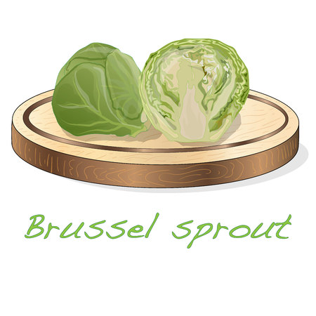 A pile of Brussels sprouts on the dish vector illustration. White background. Foto de archivo - 124529858