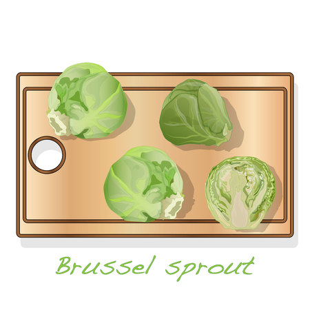 A pile of Brussels sprouts on the dish vector illustration. White background. Foto de archivo - 121663409