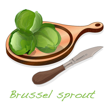 A pile of Brussels sprouts on the dish vector illustration. White background. Foto de archivo - 124529902