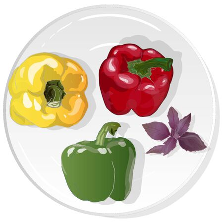 Tasty ripe bell peppers on white background. Vector illustration, separate layers per item.