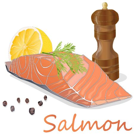 Raw salmon fillets with herbs on white background. Vector illustration.
