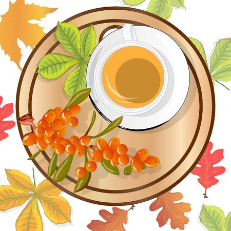 Cup of sea buckthorn tea on the dish. Branch of sea buckthorn berries with leaves. Vector illustration set on white background.