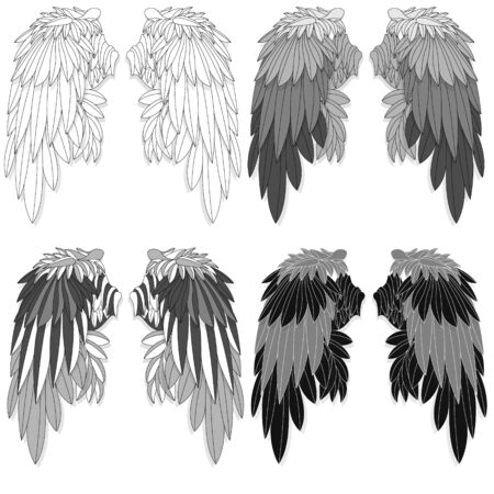 Bird wings set isolated on a white background.