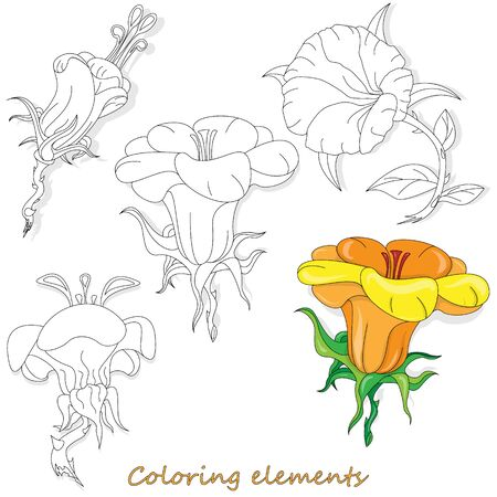 Fantasy flower elements illustration set on white isolated. Vector image. Coloring page  イラスト・ベクター素材
