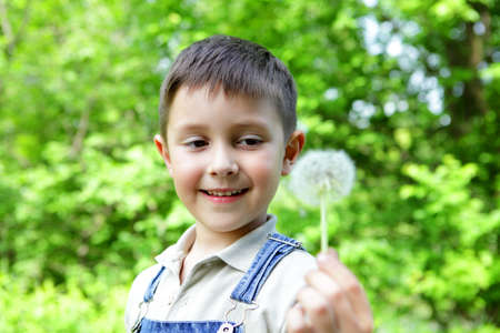The boy with a dandelion on a green backgraund