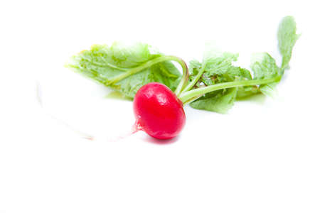redish: red fresh redish with green plant tops
