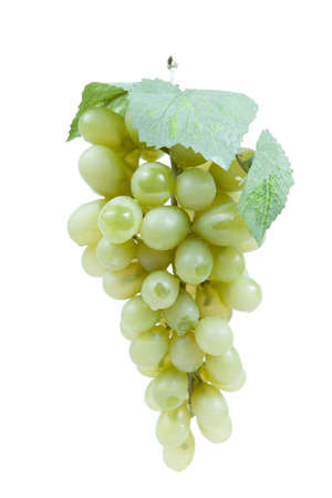 Fake plastic grapes banch on white background
