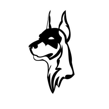 vector illustration of Doberman head