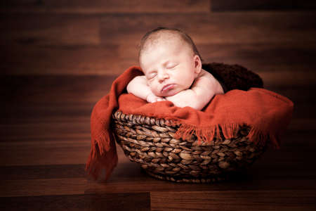 newborn baby girl sleeping photo