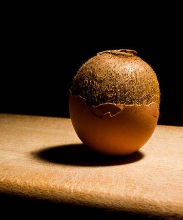Egg Kiwi calorie, chicken, concept, cracked, delicious Stock Photo