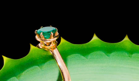 gold ring with an emerald on leaf romance, jewel