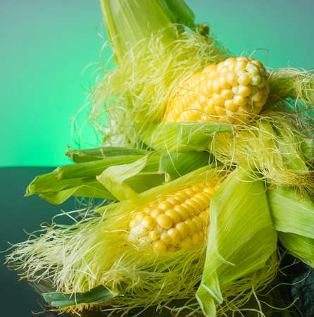 agrarian: Fresh corn on cobs on rustic wooden table,