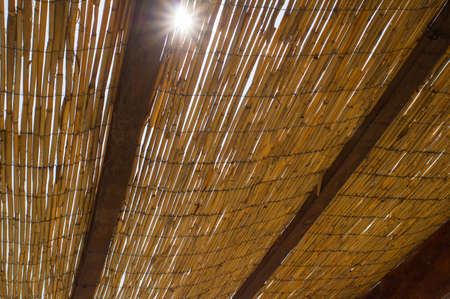 parasol of palm leaves view from below with sun shining through it beauty