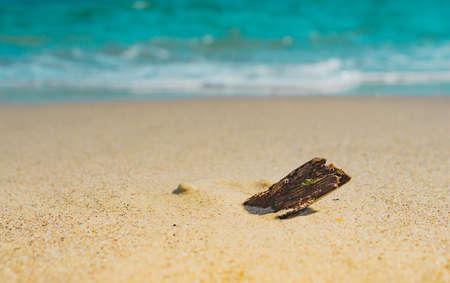 Soft wave of the sea on the sandy beach summer, seashore, lagoon, coast, surface, Imagens