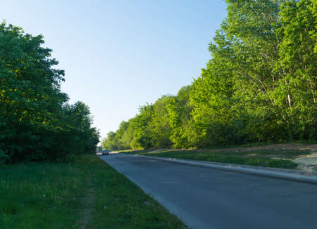 country road sunny, sunrise, sunset, way, scenic, scenery, cloudy, side, street, avenue, speedway