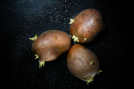 Raw potato food . Fresh potatoes in an old sack on wooden background. Free place for text. Top view Imagens - 101282104