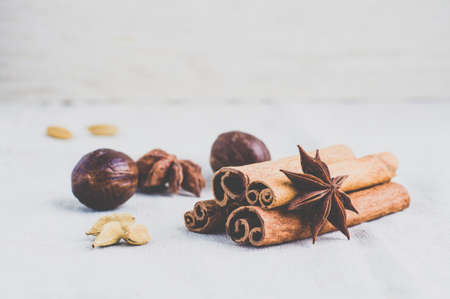 badian: Star anise, cinnamon and other spices on a light background