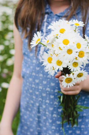 The girl in a blue dress holds a bouquet of white daisies in hand Фото со стока - 83065623