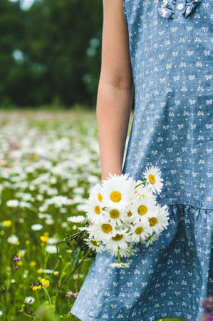 The girl in a blue dress holds a bouquet of white daisies in hand Stock fotó - 83066453