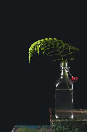 水をボトルにシダの葉。黒の背景上の静物