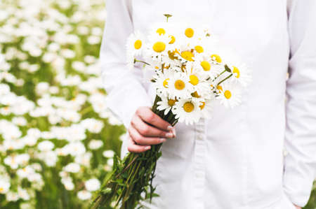 The woman in white clothes with a bouquet in her hand in the field of camomiles Stock fotó - 83873306