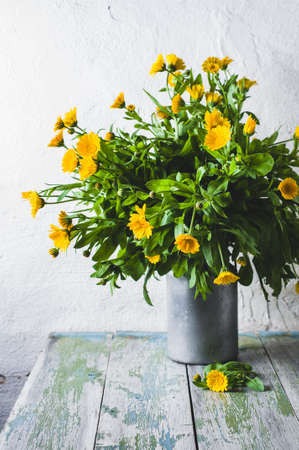 Fresh yellow calendula flowers. Concept of a garden or house farm