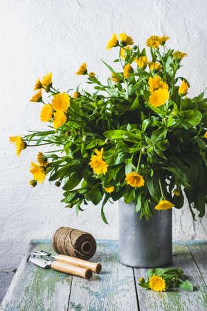 Still life with a calendula. Concept of a garden or house farm