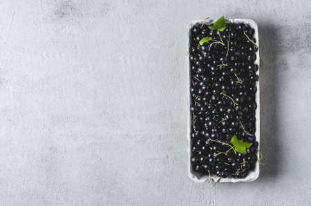 Black currant in a box over grey concrete background