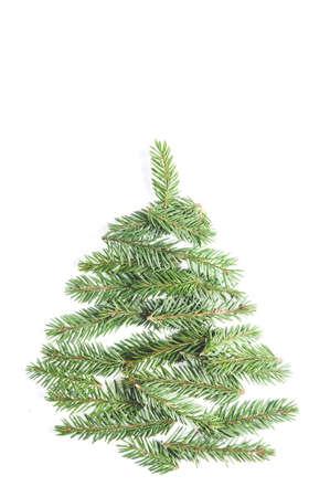 Tannenzweige auf weißem Hintergrund. Weihnachtsvorlage Standard-Bild