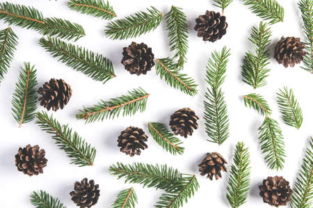 Spruce branches and cones on white background. Christmas pattern