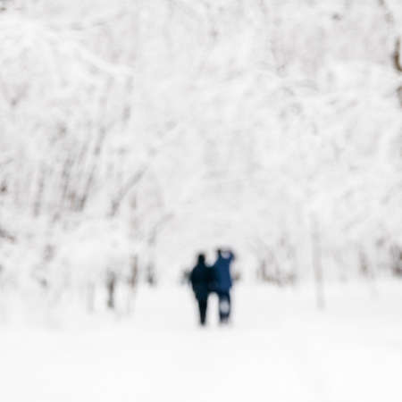 A couple on a walk in the winter forest. Blurred image