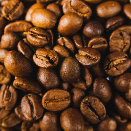 Coffee beans background. Close up style