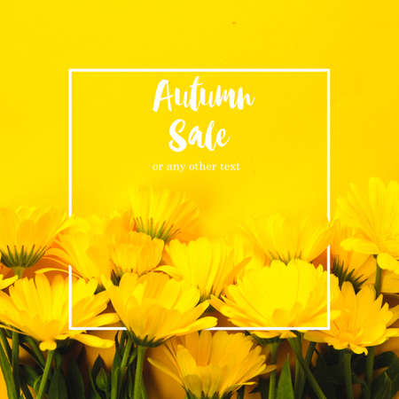 Yellow marigold and text Autumn sale on an yellow background