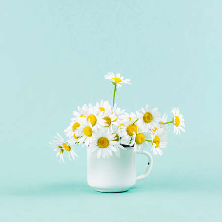 Daisy in white iron circle on turquoise background Banque d'images - 131557975