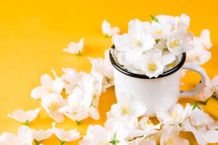 Jasmine flowers in white iron mug on yellow background