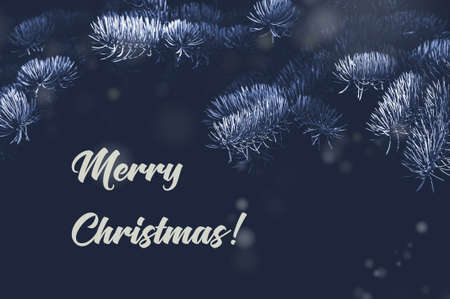 Spruce branches and text Merry Christmas on a dark background