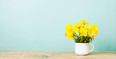 Yellow marigold with a white circle on a green background Stockfoto