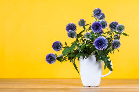 The flowers of eryngium on an yellow background