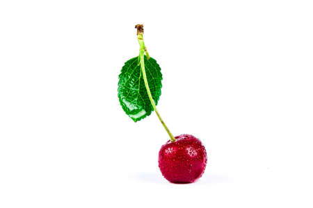 Cherry berry with green leaf in water drops isolated on white background 免版税图像